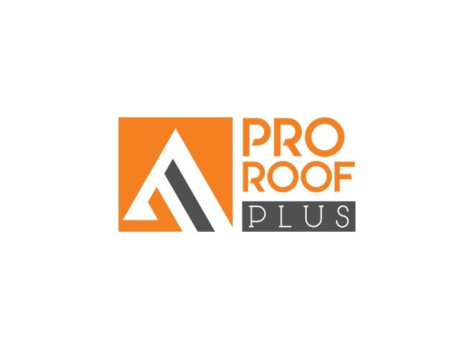 Pro Roof logo design